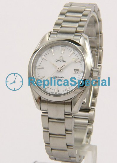 Omega Seamaster Aqua Terra 2573.70 Round Stainless Steel Bezel Automatic Watch